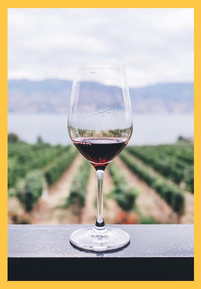 와인_섬네일_190214.jpg