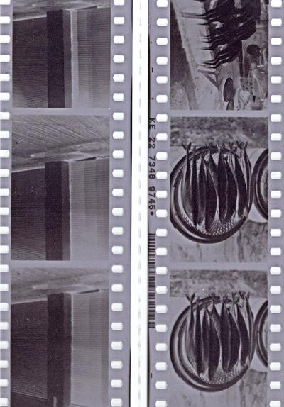 첫번째 흑백필름사진 (KT&G상상마당X캐논아카데미)