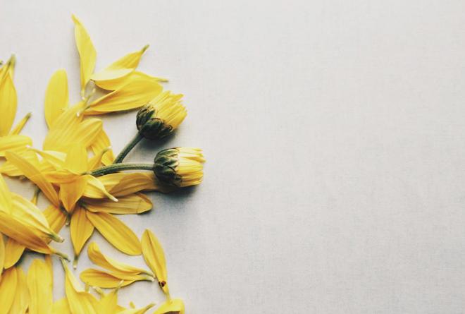 명화로 피우는 꽃_봄