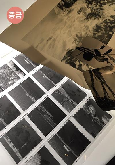 다시 만나는 흑백사진