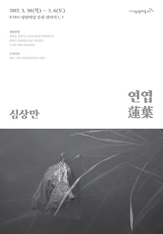 〈심상만 : 연엽(蓮葉)〉
